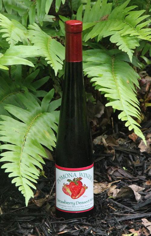 Strawberry Dessert Wine copy